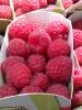 La Bella Frutta - La Bella Italia - Fromagerie - Fruits - Legumes -  (1)